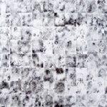 Marco Antônio Portela As que alimentam 80 fotos P&B em PVC – tiragem de 13 100 x 100cm, 2003