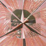 Da Série Índios Brasileiros Colagem e acrílica sobre tela 80 x 80 cm, 1975/1978
