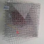 Arthur Luiz Piza, T – 962, Arame galvanizado e zinco pintado em acrílica, 27 x 27 x 17 cm