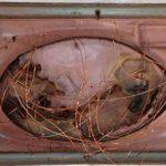 Anna Bella Geiger, Orbis Descriptio com seis ventos, série Fronteiricios, Gaveta de arquivo de ferro, encaustica, folha, molas e fios de cobre, 1995