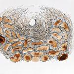 Sementes, Café e Nanquim, 43 x 58 cm, 2014