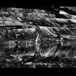 Fábio Cançado Sem Título Fotografia Fine – Art 113 x 167 cm, 2012. Tiragem 4/7.
