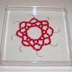 Nazareth Pacheco Sem título Cristal e agulha de sutura – Edição de 10 20 x 20 x 3cm (tamanho da caixa de acrílico), 2008