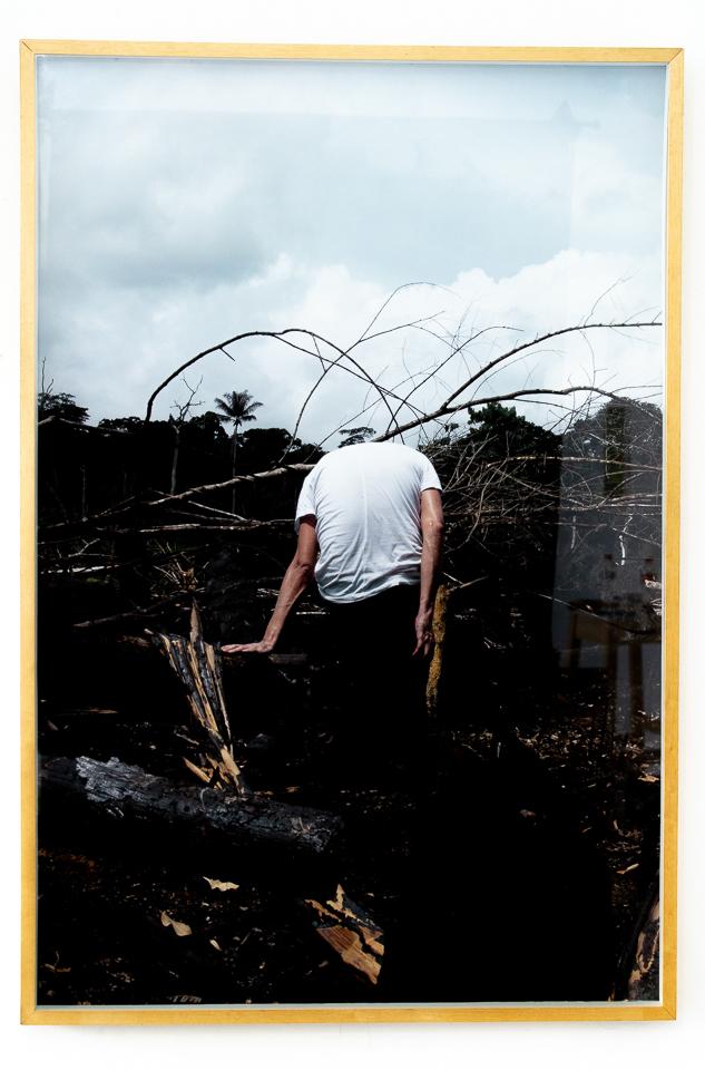 Christus Nobrega, Tronco Comun, Fotografia, 135 x 90 cm, 2014