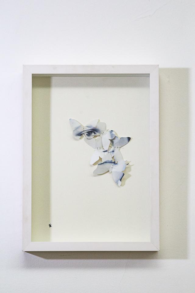 Christus Nóbrega, Entrópicos I, Impressão sobre papel recortado e alfinetes, 45 x 33 cm, 2016, Tiragem 5 de 5