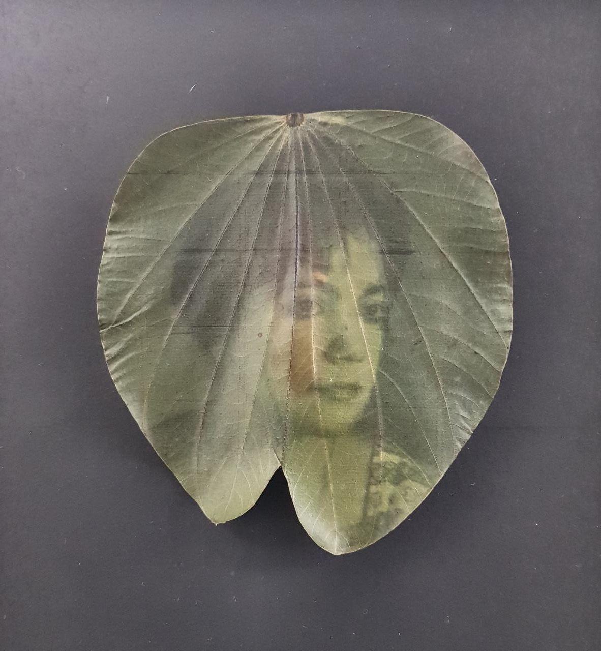 Christus Nobrega, Árvore genealógica, impressão sobre folha e verniz, 35 x 35 cm, 2014