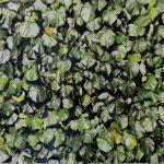 Alessandra Rehder, Série Texturas, Recortes em estilete sobrepostos na fotografia com alfinetes, 60 x 80 cm, 2019, Tiragem 1 de 3.